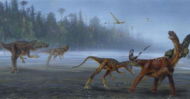 Confirmed: it is a species new to Utah