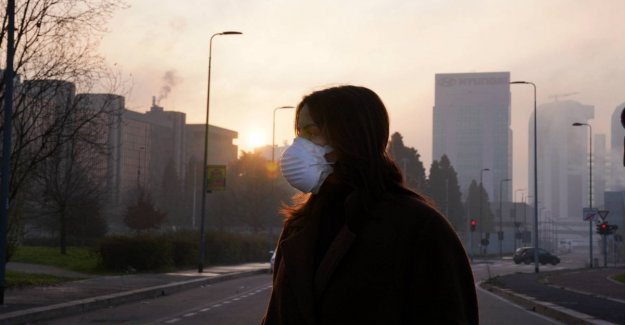 Smog increases the risk of osteoporosis
