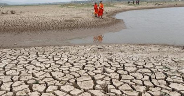 Thailand, salty water from the taps: Bangkok faces worst drought of the last 40 years