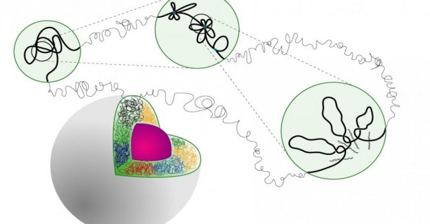 The Dna? Has a new code for three-dimensional and in the shape of a flower