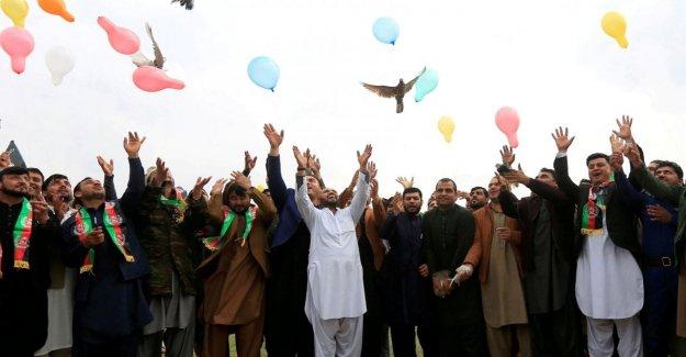 Afghanistan, a step towards peace