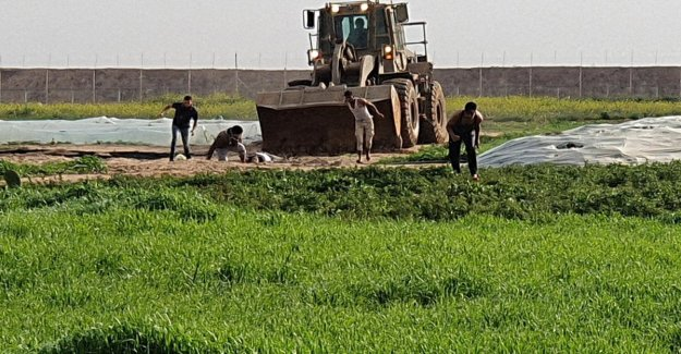 Israel kills militiaman, and removes the body with a bulldozer