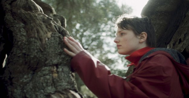 'Sowing the wind', the environmentalism of the Berlinale. The director: The pollution is mainly mental