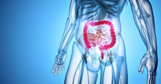 Cancer colon-rectum, by the Italian research new hopes of cure with chemo-free