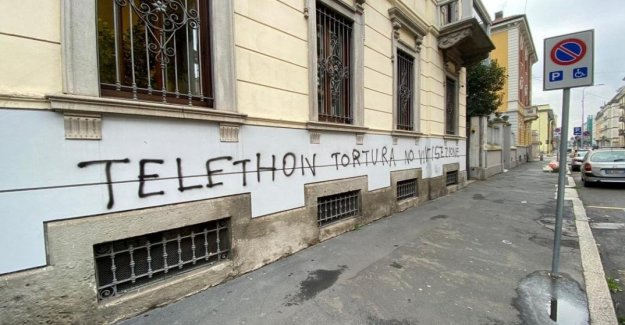 Telethon, the attack of the animal at the milan headquarters of the Telethon. But we are not torturers of animals