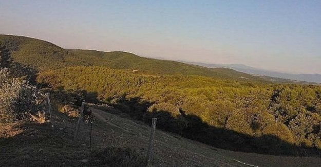 The Unesco Reserve of Mount Peglia (Umbria) is launching a center for studies on climate emergencies, and environmental medicine