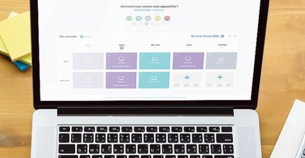 Coviflex, the app that helps HR managers to manage the case-head back to the office
