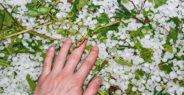 Hailstorms, hit the Bordeaux vineyards