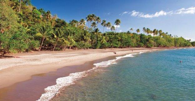Summer vacation: corridors health for travel overseas