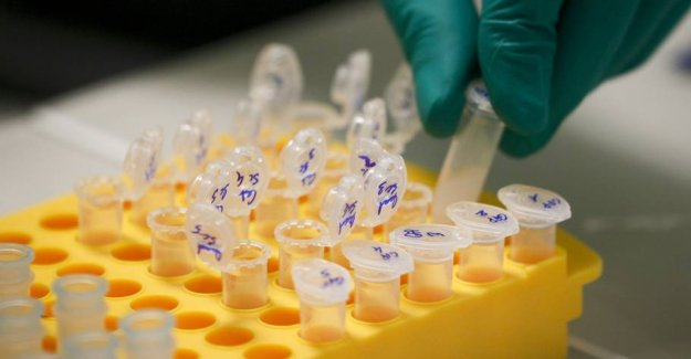 Fear of dna error leads the police to scrutinize 3450 cases
