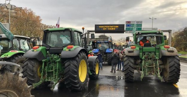 Free trade : the agreement with Mexico that is of concern to the French farmers