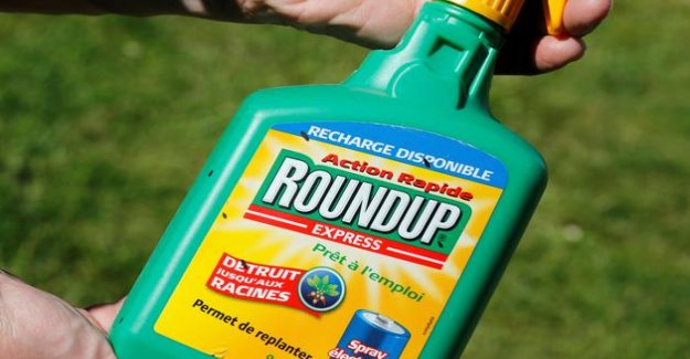 Glyphosate : Bayer will indemnify the complainants americans to the tune of $ 10 billion