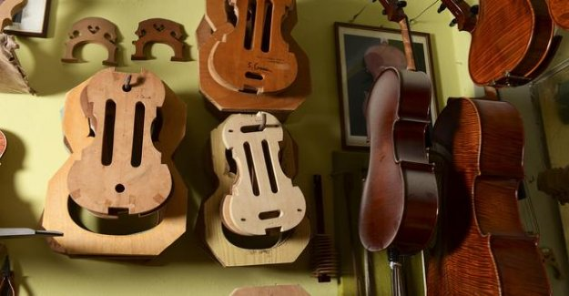 In Cremona, the violin makers are struggling for their survival in the face of the health crisis and the chinese competition