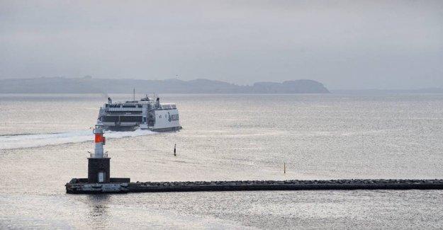 Free ferries creates long queues