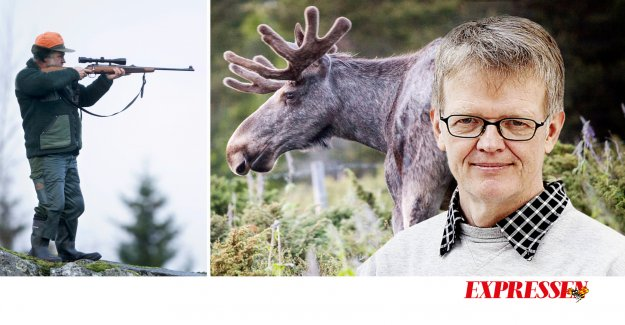 Gunnar WetterbergSkjut more and more of the moose or to see a forest fire