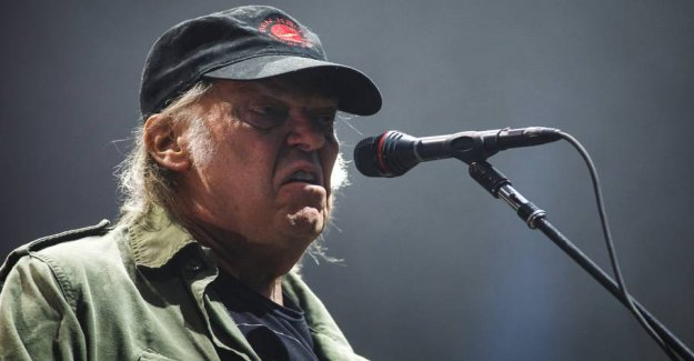 Neil Young is mad at Trump