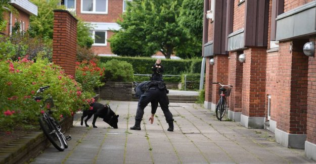 Police presence with the dna-suits and police dogs
