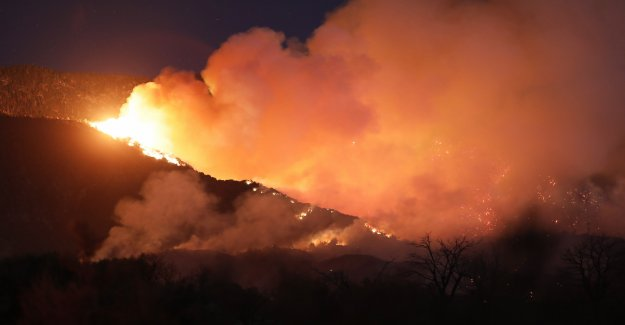 Forest fires in California, Thousands of evacuees