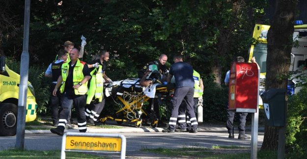 Herlev, denmark-the killing switched to the Swedish gang war