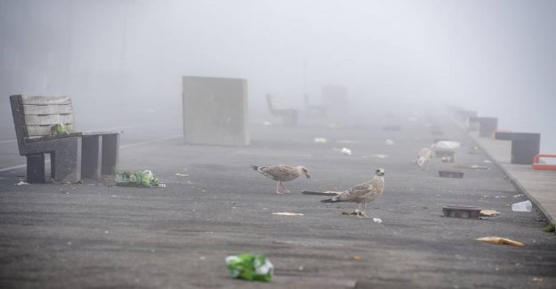 Mad again: Garbage in the streets after nattefester