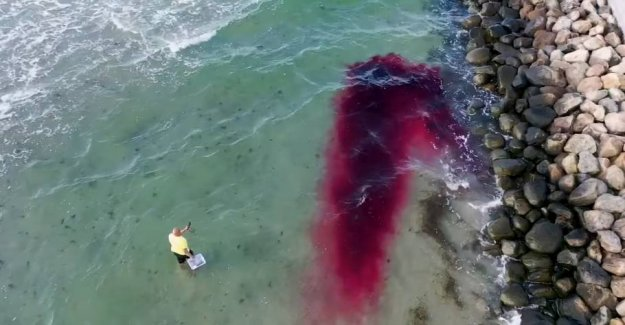 So dangerous is rip currents