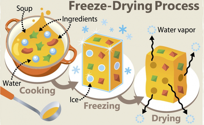 What Is involved in the Freeze-Dried Process?