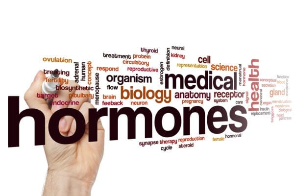 All You Need to Know About Hormone Health