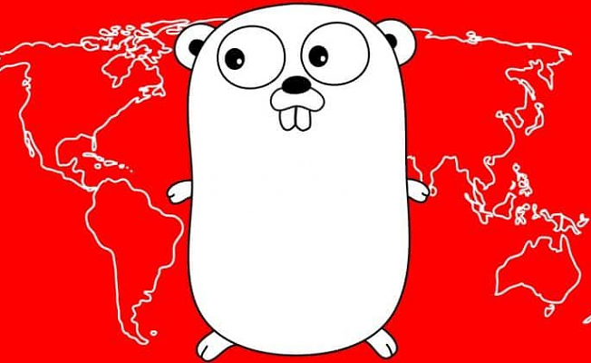 Web Development W/ Google's Go (Golang) Programming Language