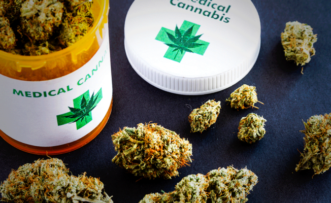 What Should You Know About CBD Oil Extraction and Strains Before Buying?