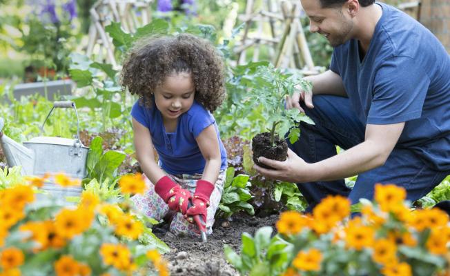 Best Ways To Enjoy Gardening Without A Garden