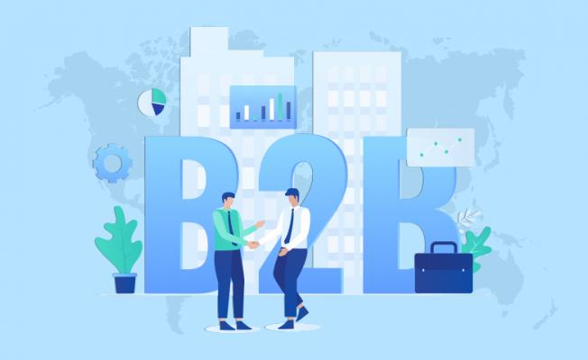 Guide to B2B Portal Development Company