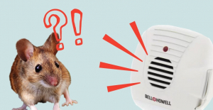 How to choose electronic rat repellent?