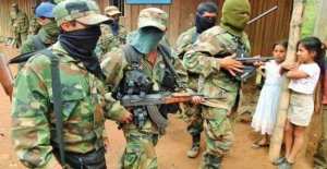 Colombia-Venezuela, the control of armed groups at the border: the killings, forced labor, recruitment of minors