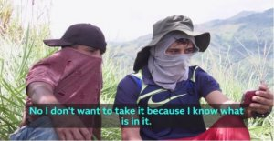 Colombia, you Can stop. The message of the two young farmers of cocaine to an English teenager