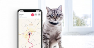 Tractive GPS Activity Pet Tracker Review & Guide to Buy Online