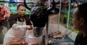 Coronavirus, China puts a ban on meat from wild animals
