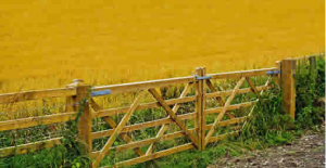 The Best Benefits of Installing High-Quality Fencing for Your Agricultural Property