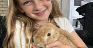 Emma's unhappy: the Children's rabbits disappear