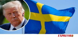 Ann-Charlotte MarteusTrump shape Sweden's image, whether he wants to or not