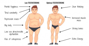 Common Causes of Low Testosterone