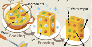 What Is involved in the Freeze-Dried...