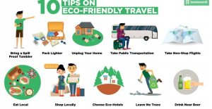 Eco-Friendly Tips for Home and Lifestyle Gurus