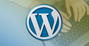 WordPress Plugin Development – Build 14 Plugins