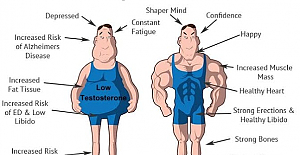Natural Ways to Increase Testosterone Levels