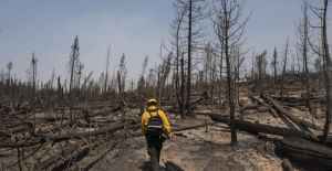 Wildfires blazing through West draw support from states